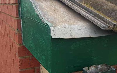 Fascia and Eaves removal and repair